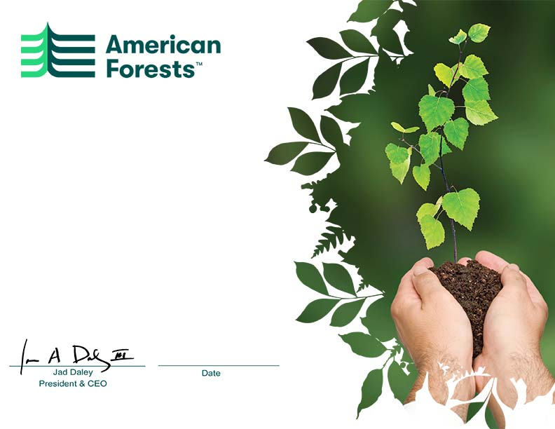 Gift of trees american forests select a design yelopaper Gallery