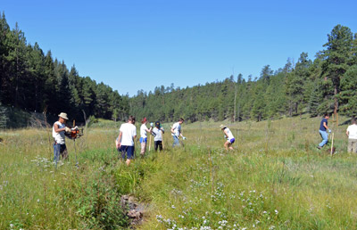 A 2012 Global ReLeaf project in New Mexico restores a riparian area of the Jemez Mountain.