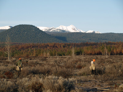 A 2012 Global ReLeaf project in Oregon's Deschutes National Forest works to restore a landscape burned in the 2010 Rooster Rock Fire.