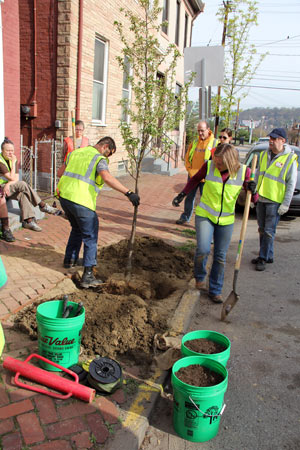 Tree planting in Pittsburgh