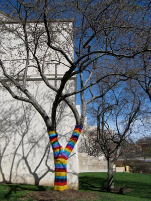 Yarn-bombed tree