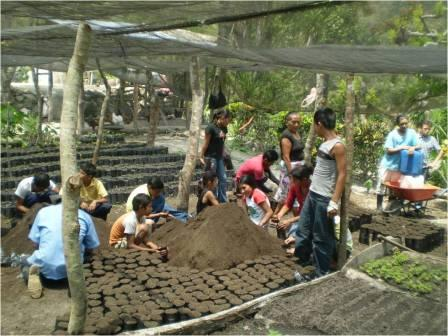 2010 Global ReLeaf in Honduras