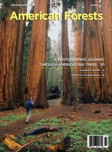 American Forests Autumn 2011 cover