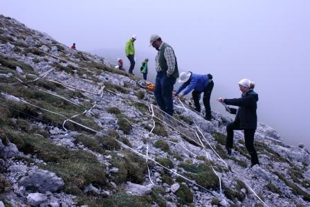 Austrian Hochschwab Mountains plant research