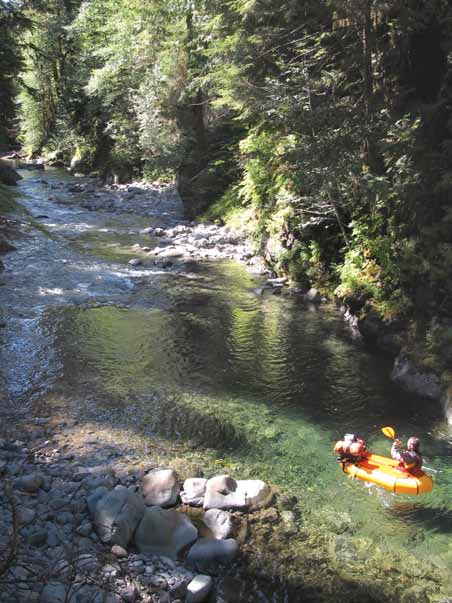 Paddling down the Bogachiel River