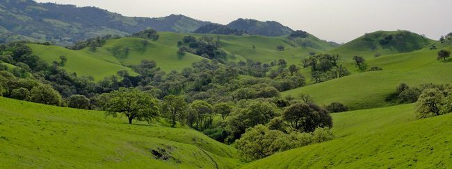 Mount Diablo Regional Trail in California