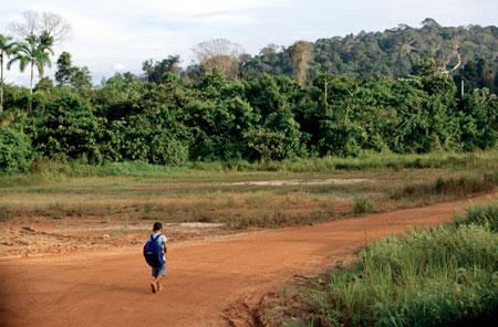 Farmland near Manaus, Brazil