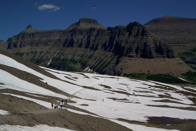 Visitors walking the trail from Logan Pass Visitor Center to Hidden Lake Overlook in Glacier National Park