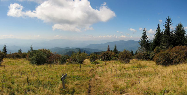 Forney Ridge Trail, Great Smoky Mountains National Park