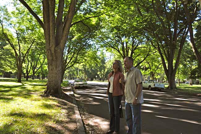 sacramento urban forest