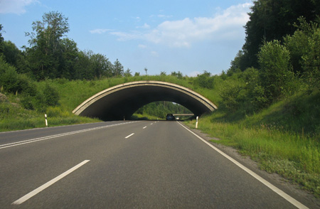 A green bridge over a highway in Boeblingen, Germany.