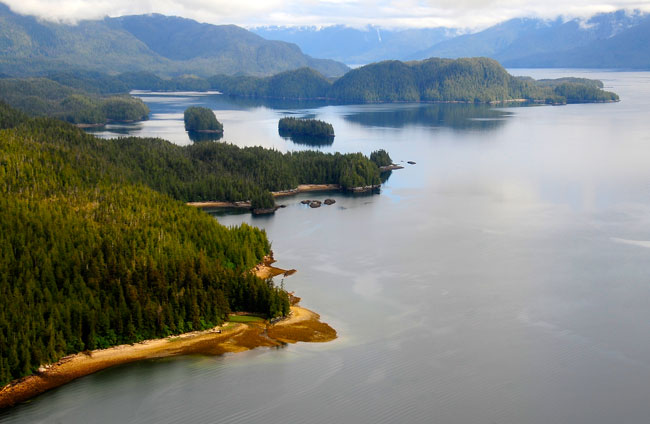 Tongass National Forest near Ketchikan, Alaska