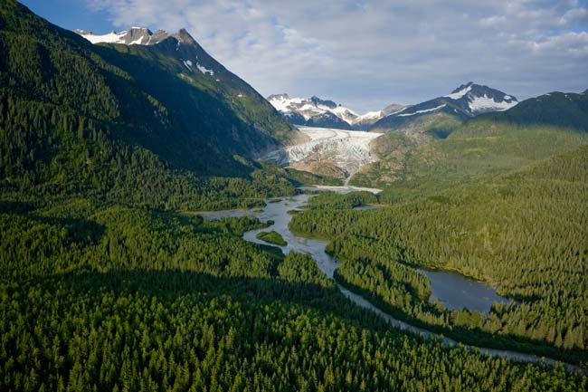 Transition for Tongass - American Forests