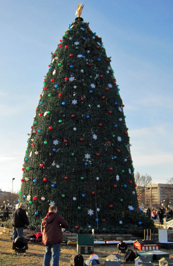 2010 National Christmas Tree