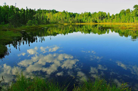 Chequamegon-Nicolet National Forest