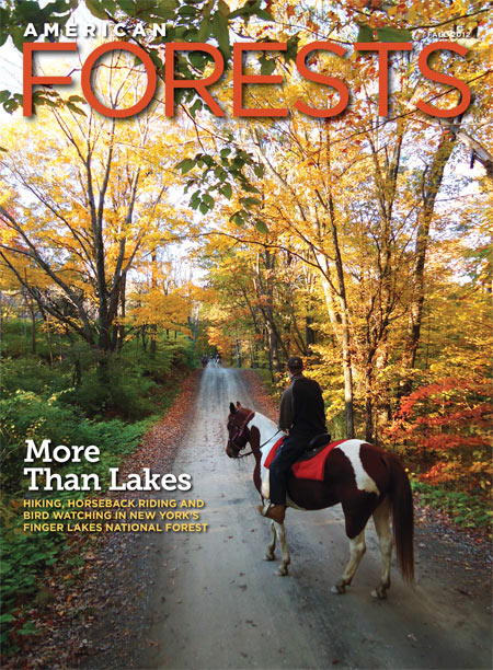 Autumn 2012 Cover - American Forests Magazine
