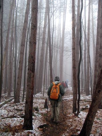 Hiking the Interloken Trail during winter