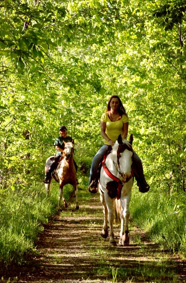 Riders on a trail in Finger Lakes National Forest
