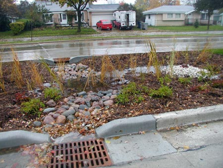 Bioswale. Credit: City of Milwaukee