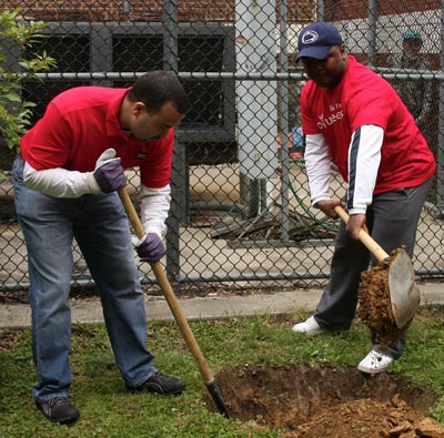 Wells Fargo volunteers plant new trees at the Oak Lane Library