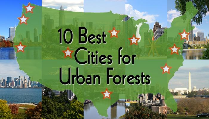 Top 10 graphic - 10 Best Cities