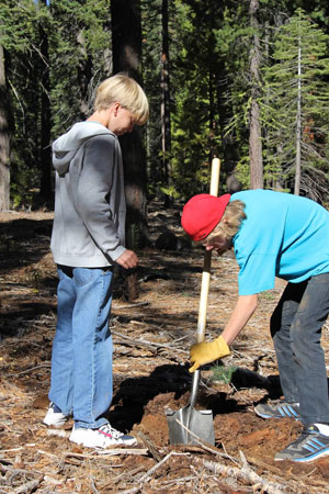 Volunteers during a 2012 Global ReLeaf planting project near Lake Tahoe