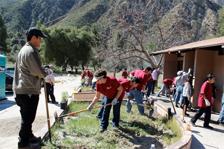 Volunteers doing restoration work in Angeles National Forest