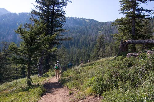 Hiking in Bridger-Teton National Forest