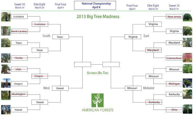 Bracket-template-Final-Four-(website-size)