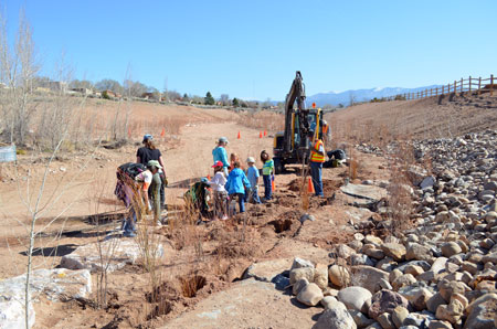 Jemez Mountains planting