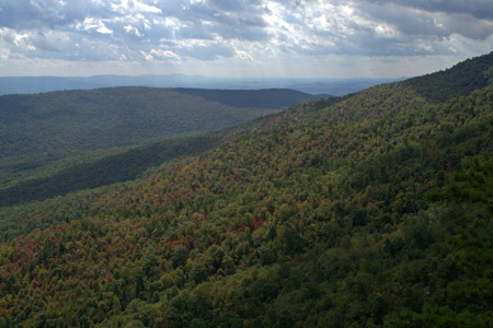 View from the White Rocks on Little Sluice Mountain in George Washington National Forest