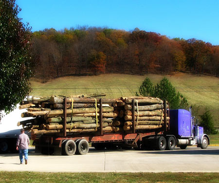 Logging truck in Ohio