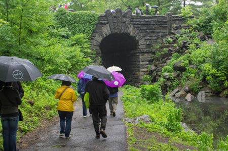 American Forests supporters explore Central Park's North Woods.