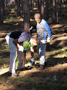 Students and volunteers act as tree stewards for the Woods for Wildlife Initiative. Photo: Muskegon Conservation District