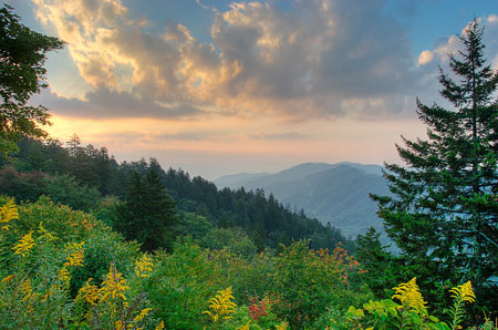 Great Smoky Mountains National Park. Credit: Matthew Paulson
