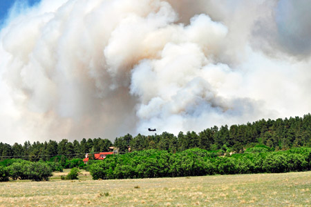 Members of the U.S. Army fight the Black Forest Fire in Colorado