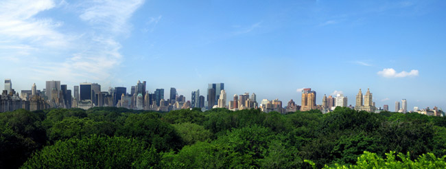 New York City, where eight lives are saved each year from trees removing fine particulate matter from the air