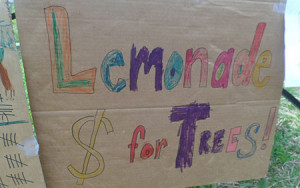 Lemonade money for trees