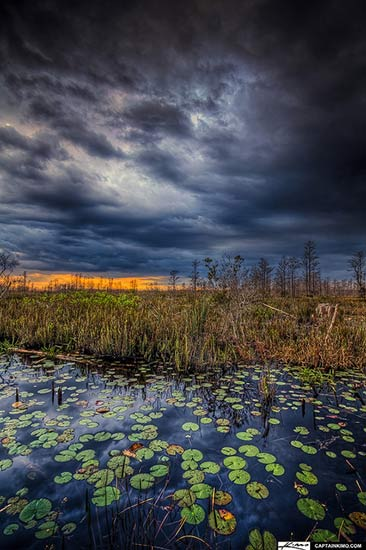 Loxahatchee Slough in Palm Beach County, Florida