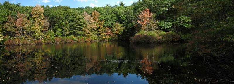 Walden Pond in Concord, Mass., where Henry David Thoreau lived and wrote for two years.