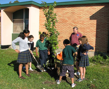 Students plant trees in Jefferson Parish as part of American Forests Katrina ReLeaf efforts.