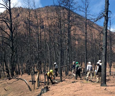 An AmeriCorps crew performs bank stabilization work at the site of the 2012 Waldo Canyon Fire in Colorado Springs, Colo.