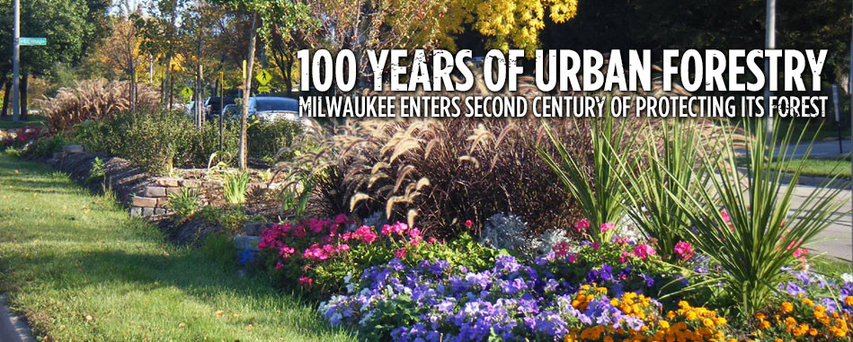 Milwaukee boulevard landscaping