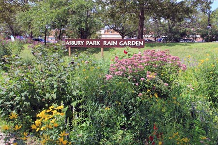 A rain garden developed by the Asbury Park Environmental Shade Tree Commission in Asbury Park, N.J.