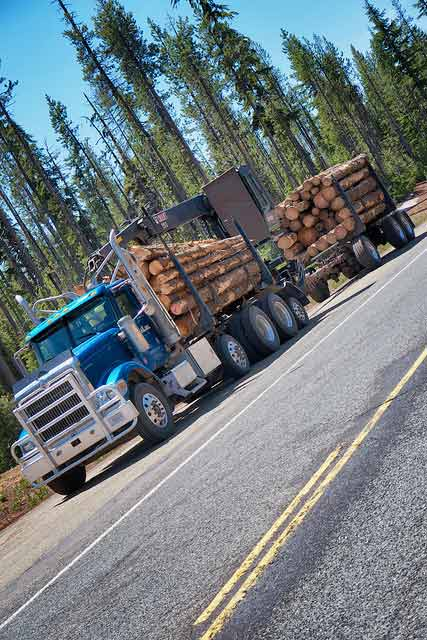 Logging truck in Rogue River National Forest.