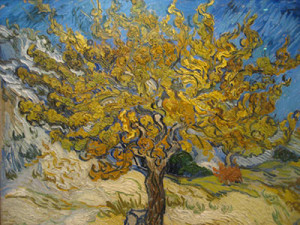 "Vincent Van Gogh's ""Mulberry Tree"""