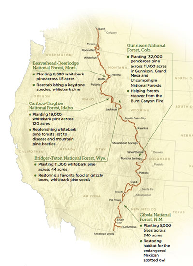 Map of Great Divide Mountain Bike Route and American Forests Planting Sites