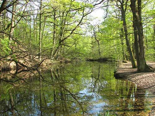 Lac Fer-à-Cheval
