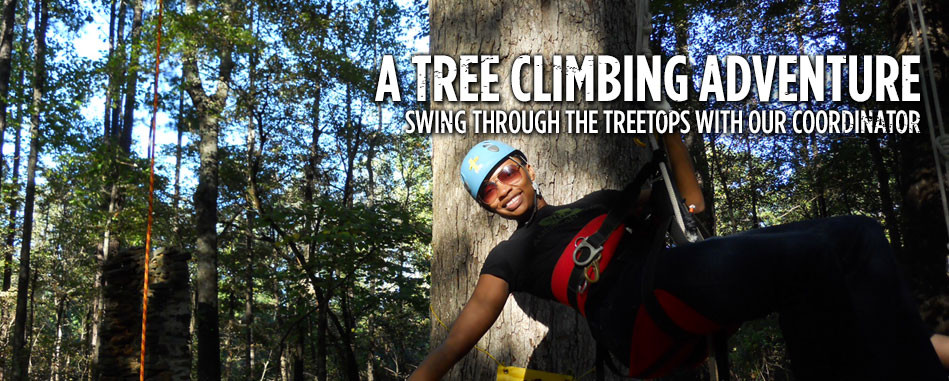 Sheri Shannon, Tree Climbers International