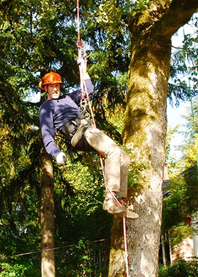 Terrill Collier tree climbing.